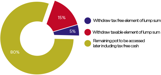 Tax free element pie chart